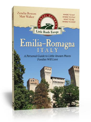 ER book cover 3D